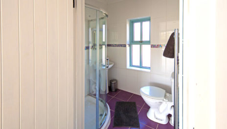 Shower Room 464x263