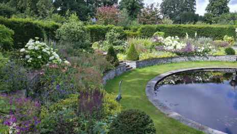 Garden 464x262