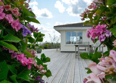 Deck Flowers 400x284
