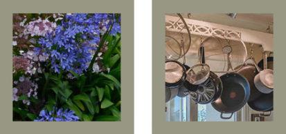 Flowers Pots 413x194