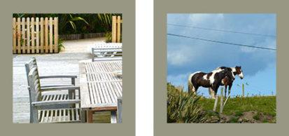 Table Horses 413x194