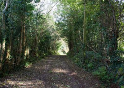 Garden Driveway 400x284