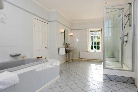 Shower 449x300