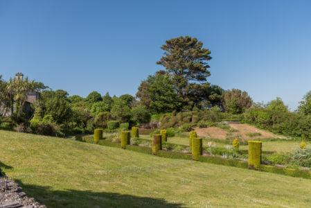 Topiary 449x300