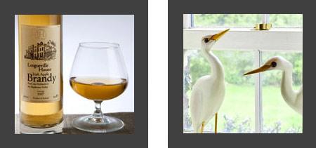 Brandy Birds