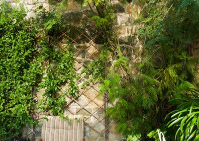 Conservatory Plants 400x284