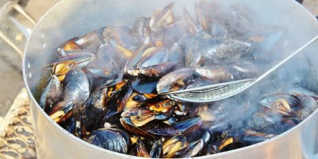 Steamed Mussels 5014x2508 68342 464x232