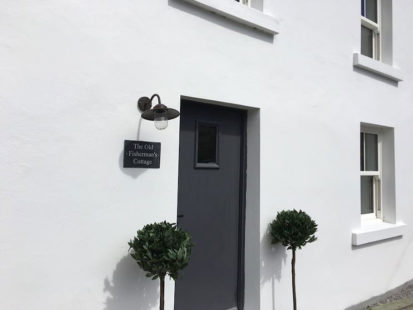 Door 413x310