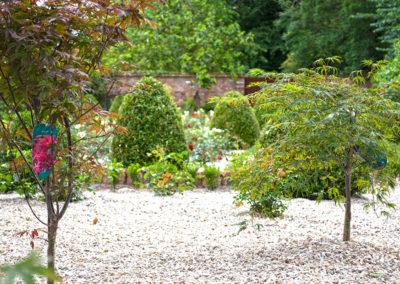 Rose Garden Trees 400x284