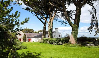 House Garden Trees 413x244