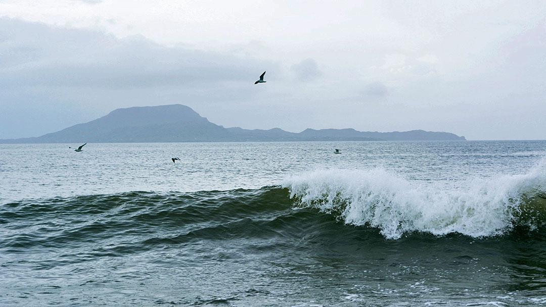 Wave Half