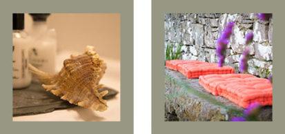 Shell Cushions 413x194