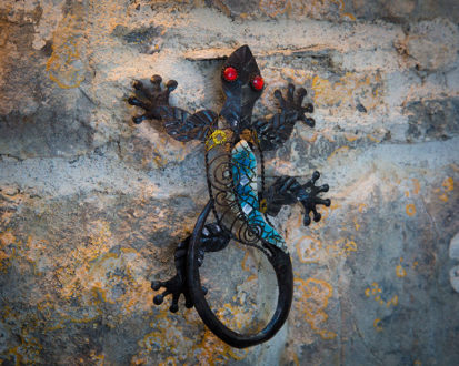Wall Lizard 413x330