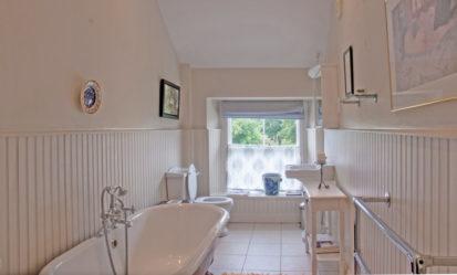 Bathroom Pale 413x249