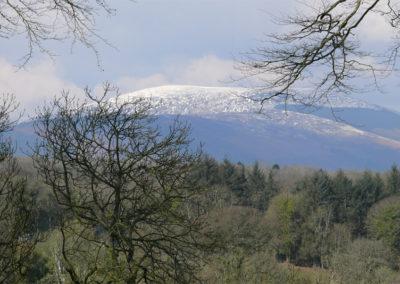 Mountain 400x284