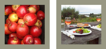 Apples Picnic 413x194