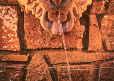 Lion Fountain T 400x284