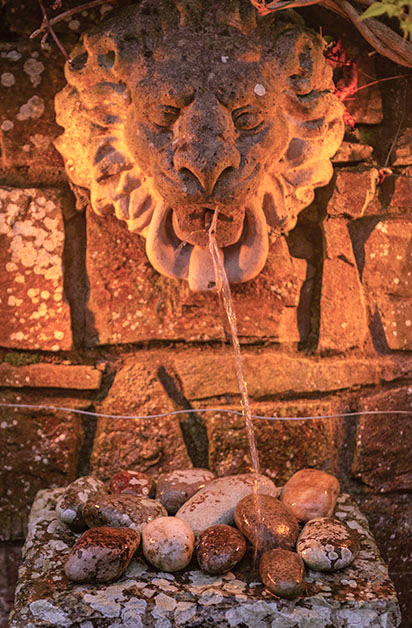 Lion Fountain T