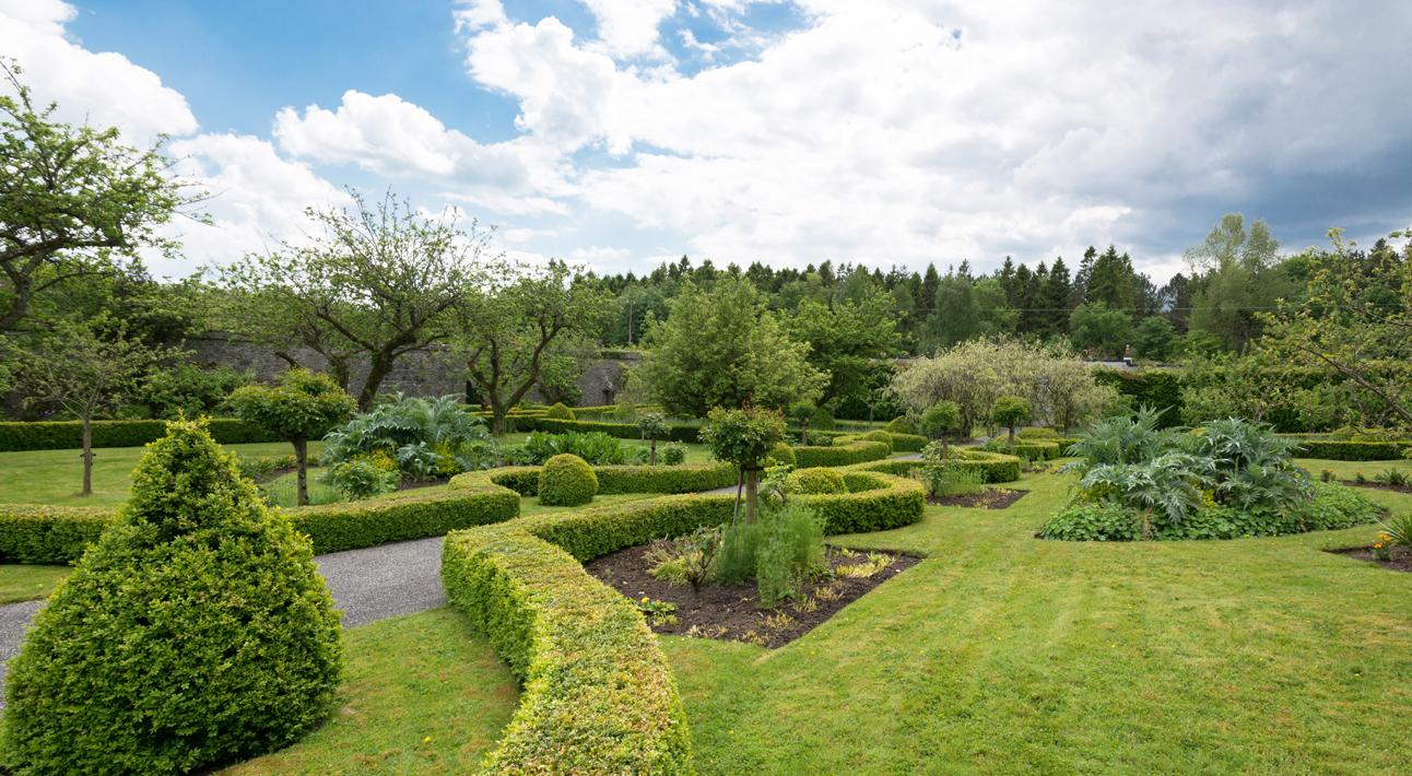 Garden Hedge Pano