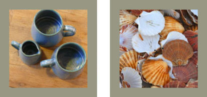 Mugs Shells 413x194