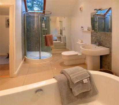 Shower 413x364