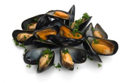 Mussels 1 413x271